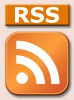 orange rss button